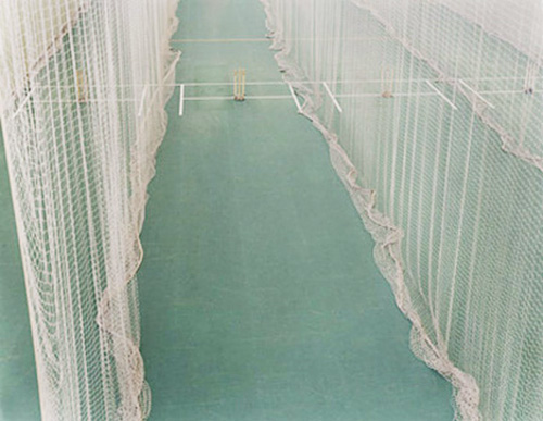 Untitled (cricket)