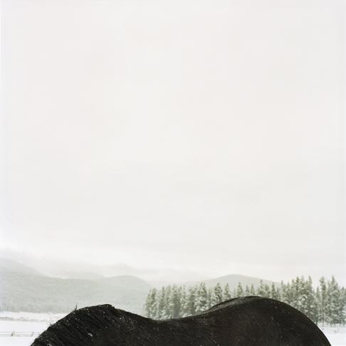 Horsebackmtn