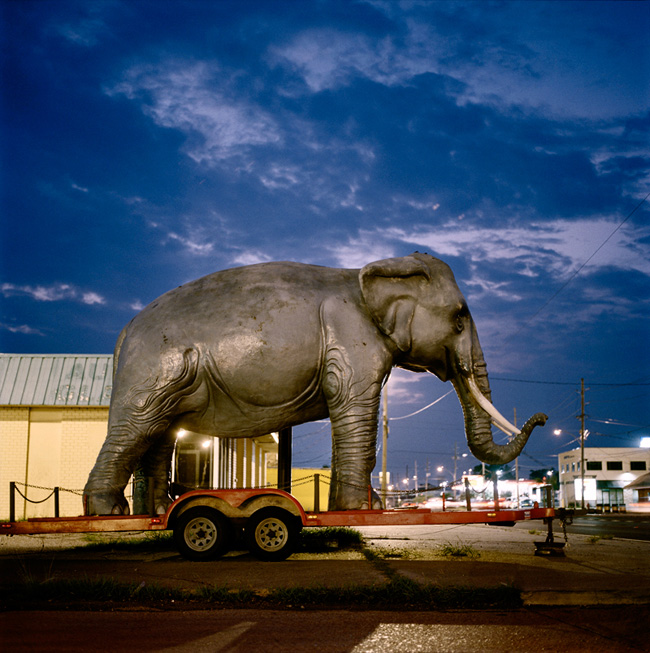 Bekman_plumb_elephant